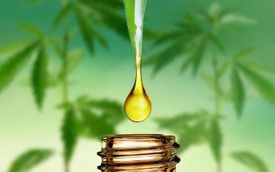 Hoe smaakt CBD olie?
